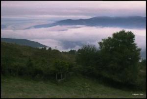 The Sea of Mist