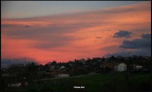 The Pink Shawl I